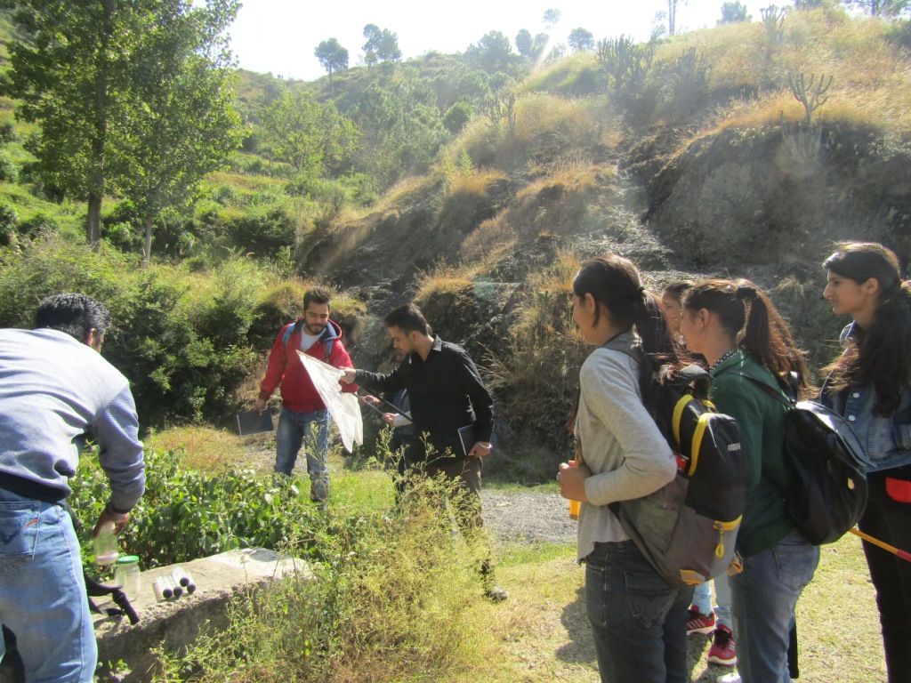 Collection Practices of Insects during Field Visit at ZSI, Solan